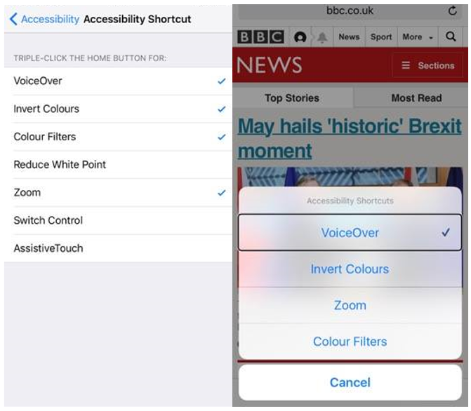 iPhone Accessibility options such as voiceover, inverted colours and zoom.